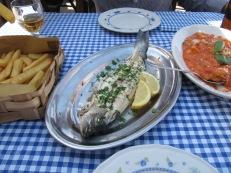 Pesce alla griglia (catch of the day) + Gnocchi
