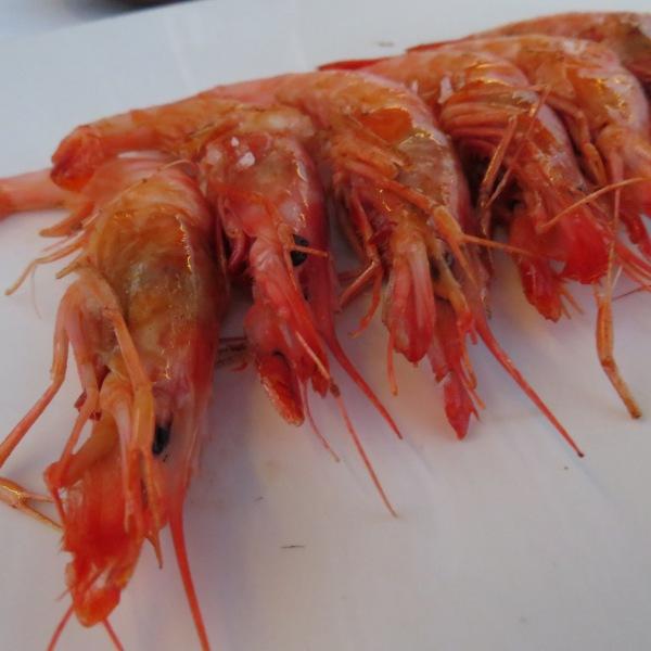 Menorcan prawns